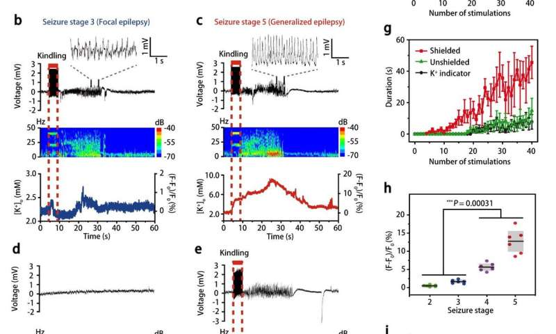 Sensitive and specific potassium nanosensors to detect epileptic seizures
