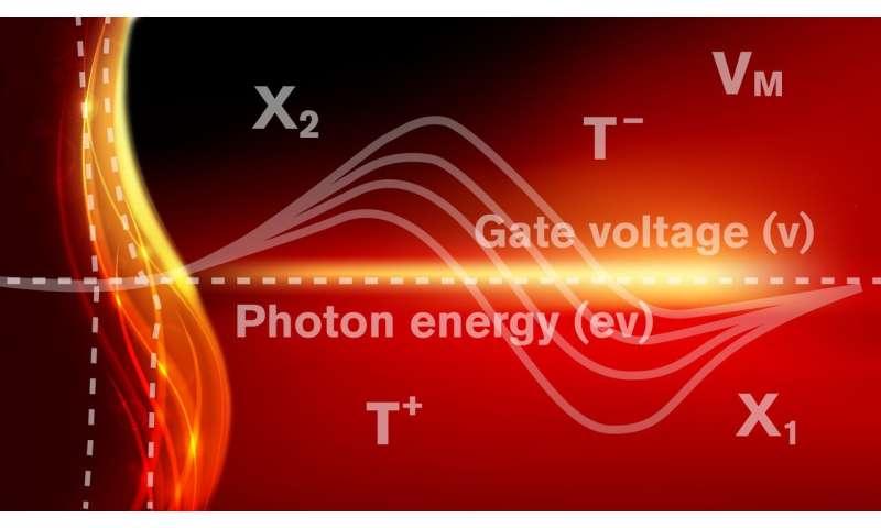 Shedding new light on nanolasers using 2D semiconductors
