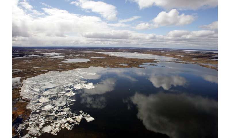 Siberia and the Arctic Circle are prone to large year-on-year temperature fluctuations, but the persistence of this year's warm