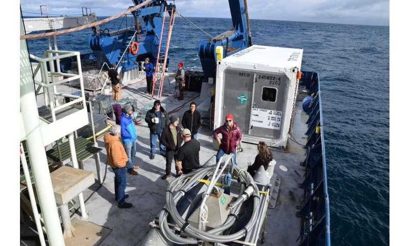 Smaller than expected phytoplankton may mean less carbon sequestered at sea bottom