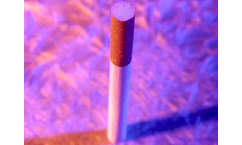 Smoking cessation messages focusing on child most important