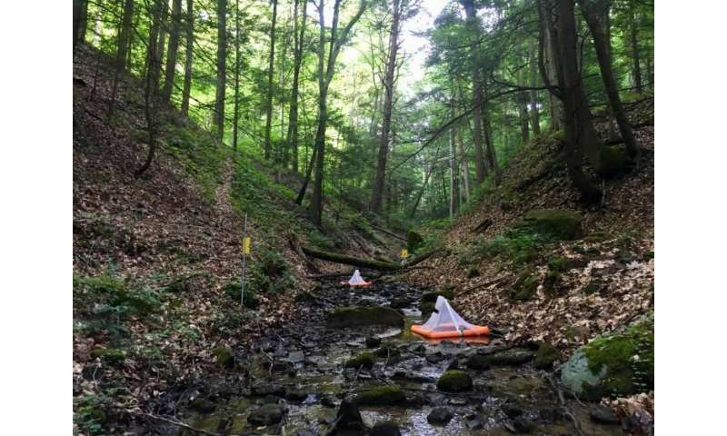 Stream pollution from mountaintop mining doesn't stay put in the water