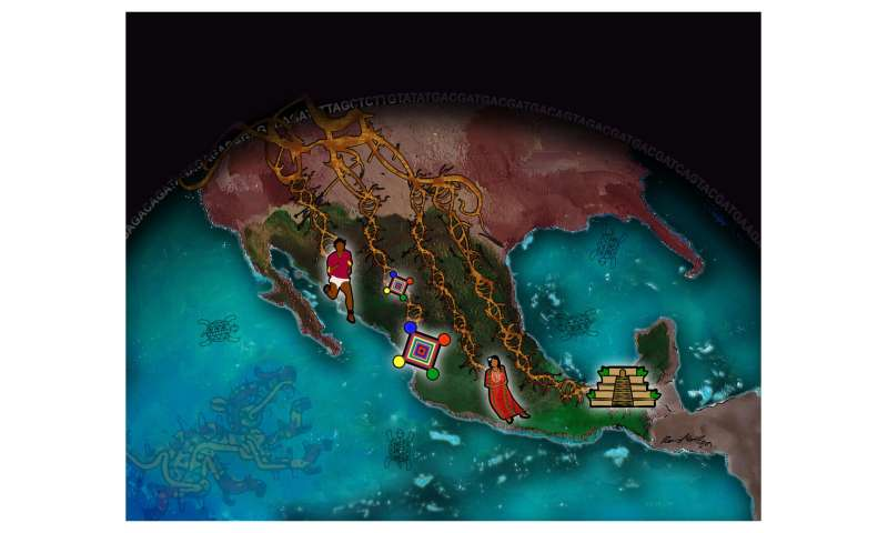 Study reveals pre-Hispanic history, genetic changes among indigenous Mexican populations