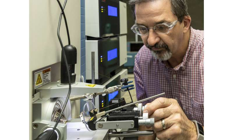 Sulfur-scavenging bacteria could be key to making common component in plastic