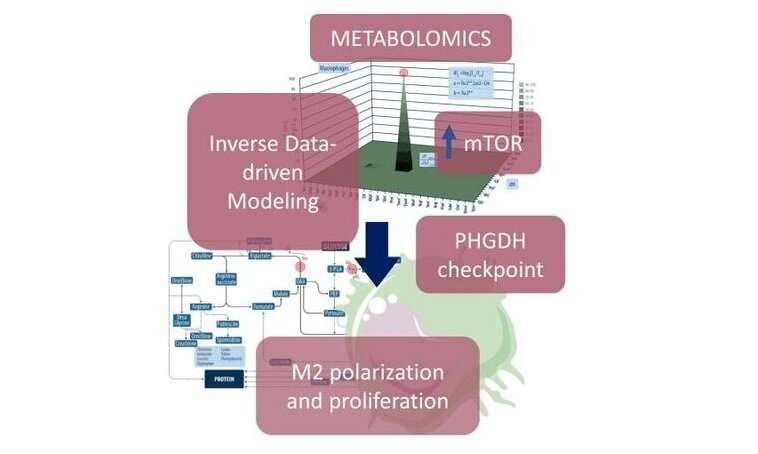 Targeting the cancer microenvironment