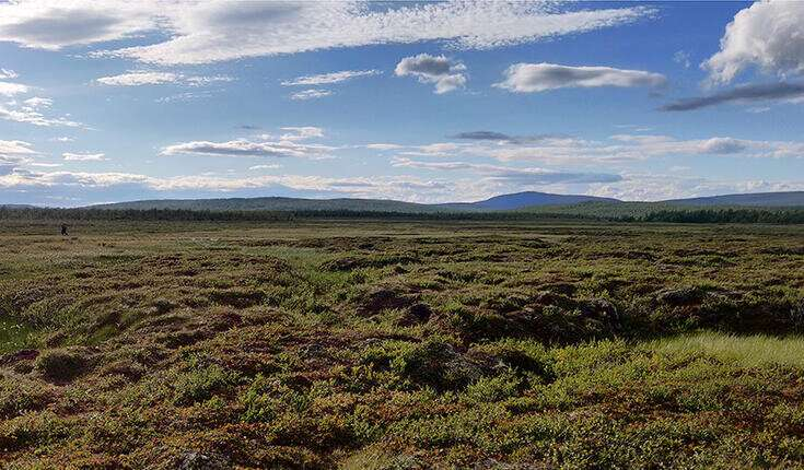 Thawing permafrost releases organic compounds into the air