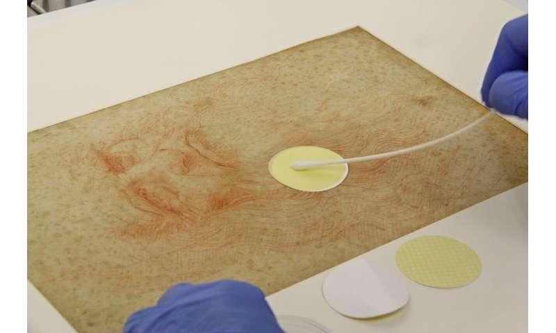 The microbiome of Da Vinci's drawings