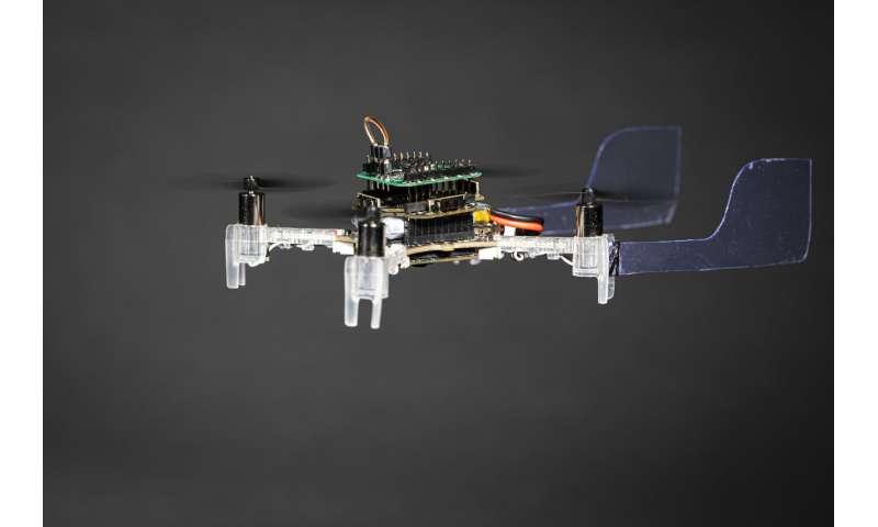 """""""The Smellicopter,"""" drone penghindar rintangan yang menggunakan antena ngengat hidup untuk mencari bau"""