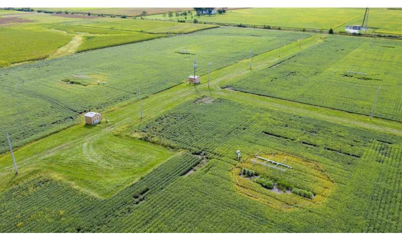 To predict how crops cope with changing climate, 30 years of experiments simulate future