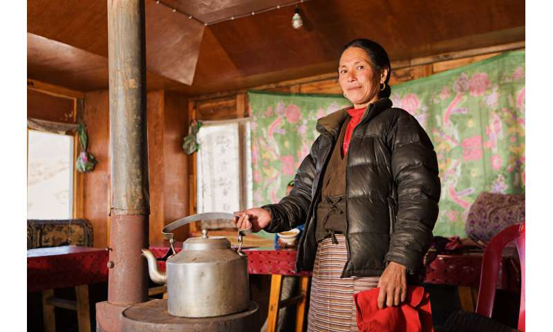 Traditional biomass stoves shown to cause lung inflammation