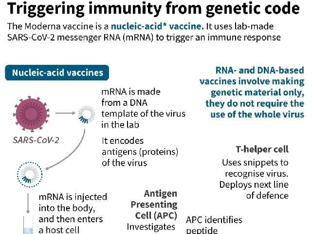 Triggering immunity from genetic code