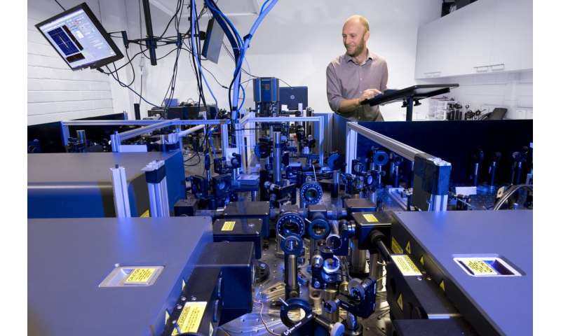 Ultrafast probing reveals intricate dynamics of quantum coherence
