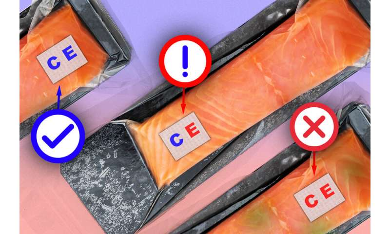 Velcro-like food sensor detects spoilage and contamination