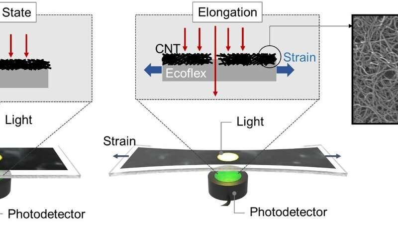 Wearable strain sensor using light transmittance helps measure physical signals better