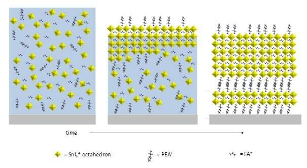 X-rays reveal in situ crystal growth of lead-free perovskite solar panel materials