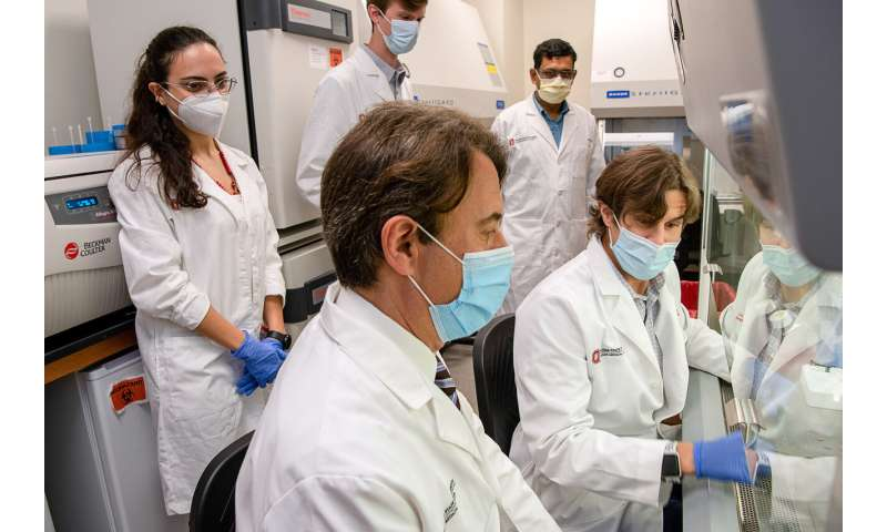 Discovery of new cell may be key to treating incurable neurological diseases