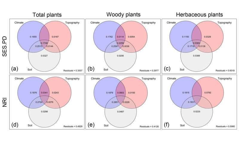Researchers investigate the spatial pattern of plant diversity in the Horn of Africa