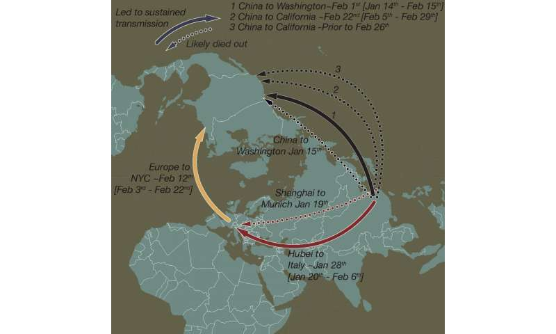 How coronavirus took hold in North America and in Europe