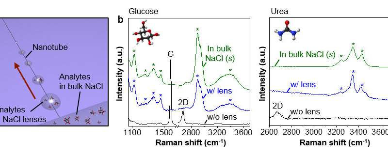 New study presents hygroscopic micro/nanolenses along carbon nanotube ion channels