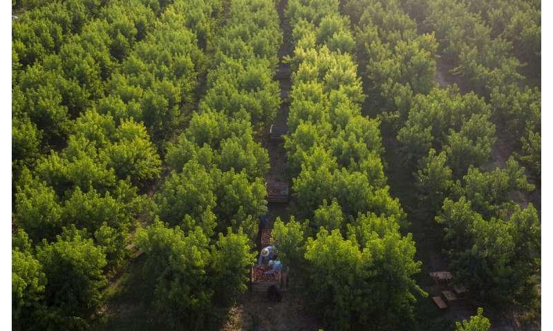 Virus spike in Spain reveals plight of seasonal farm workers