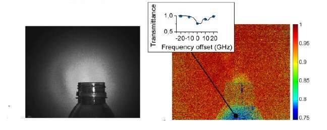Researchers combine advanced spectroscopy technique with video-rate imaging