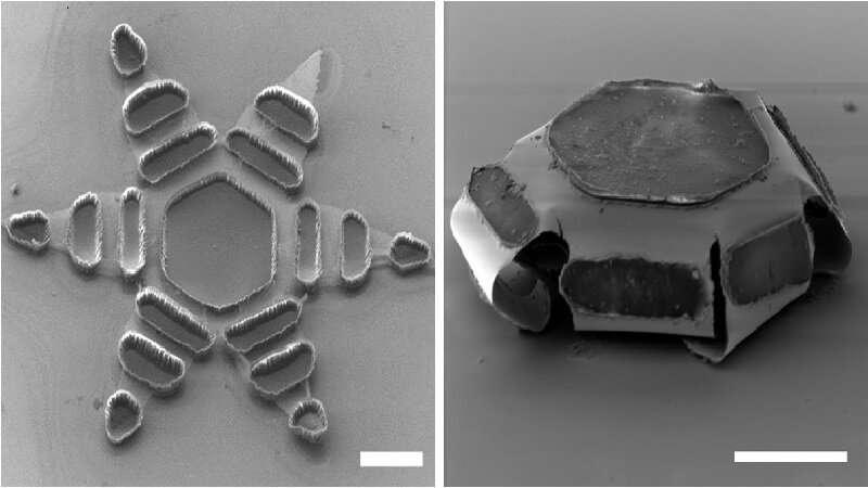Onderzoekers ontwerpen kleine machines die medicijnen efficiënt afleveren