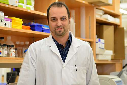 Researchers make first steps toward a cure for HIV