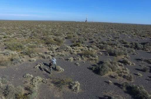 Climate change will lead to abrupt shifts in dryland ecosystems, study warns