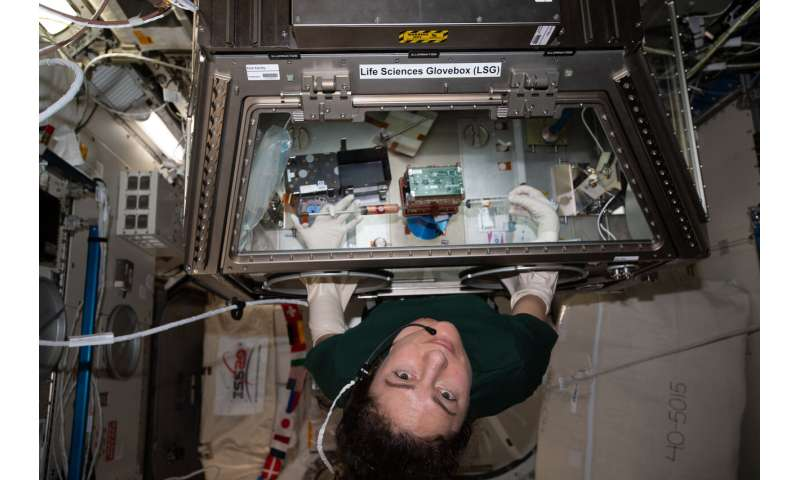 3D printing, biology research make the journey back to Earth aboard SpaceX's Dragon