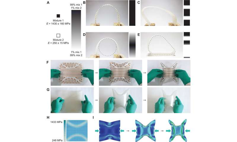 Additive manufacturing of cellulose-based materials with continuous, multidirectional stiffness gradients