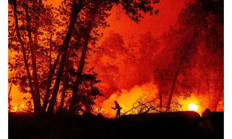 A firefighter douses flames as they push towards homes during the Creek Fire in the Cascadel Woods area of unincorporated Madera