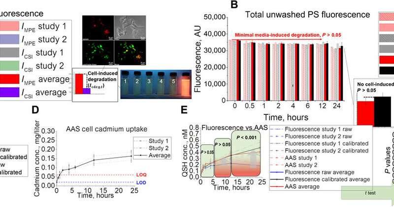 Animal simulations facilitate smart drug design via nanomaterial transport to individual tissue cells.