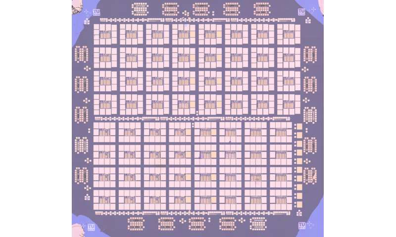 An operational amplifier fabricated using a 2-D semiconductor