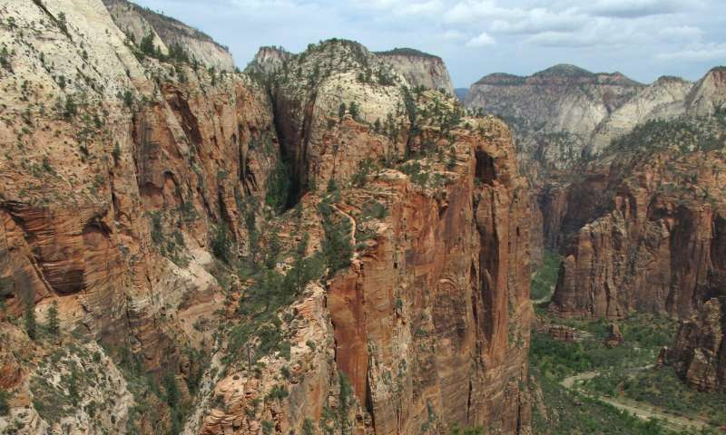 Appeals grow to close US national parks during pandemic