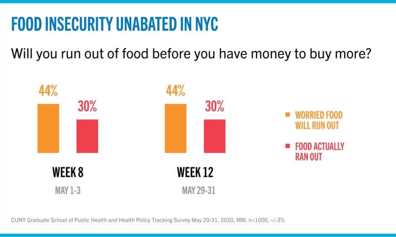 As food insecurity continues to plague New Yorkers, impact on children is worrisome