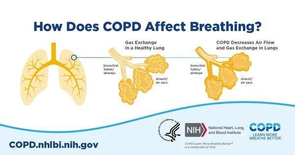 Cigarette smoke can reprogram cells in your airways, causing COPD to hang on after smoking ends