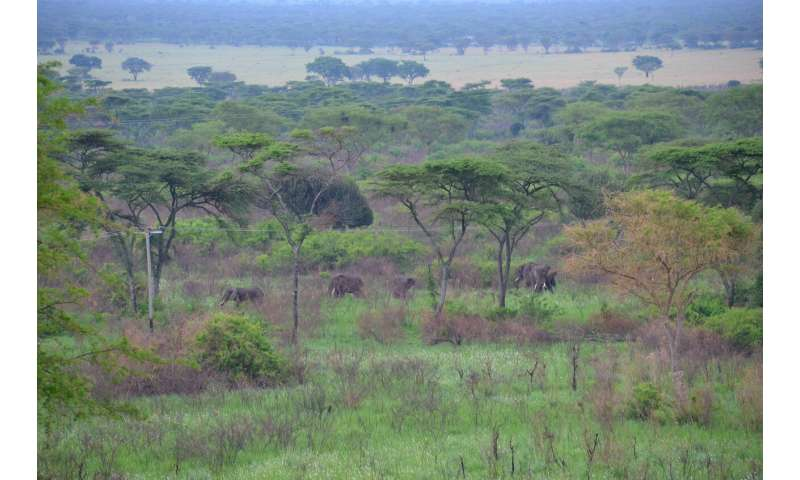 Conservation goals may be stymied by a lack of land for biodiversity offsetting