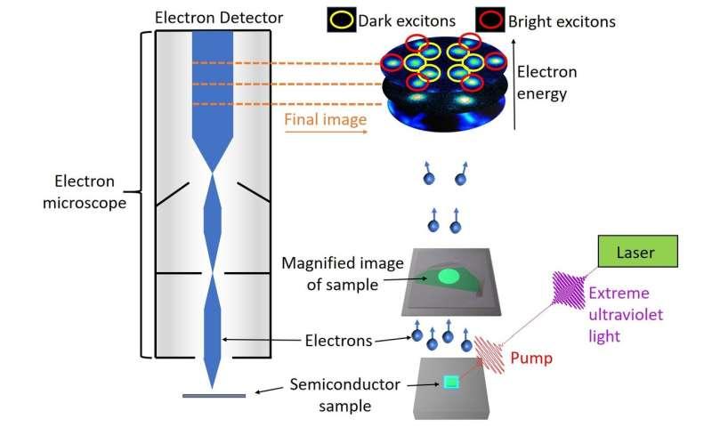 Dark excitons fall into the spotlight