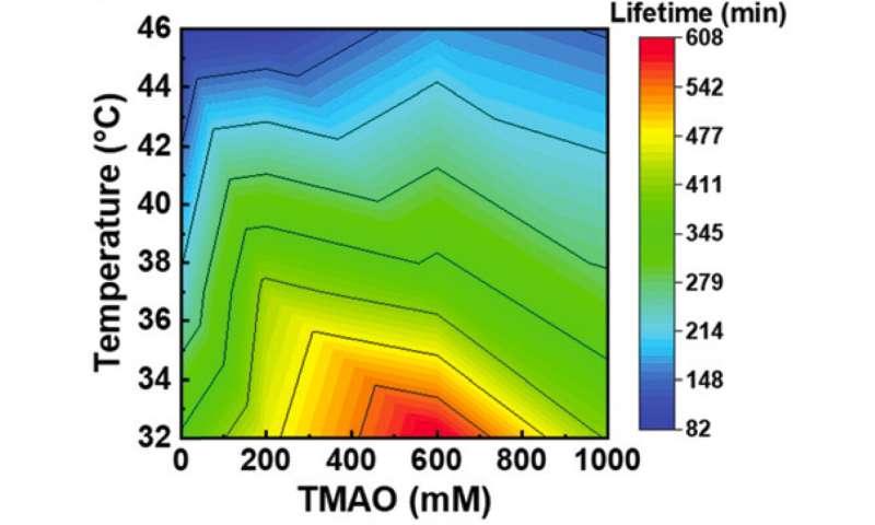 Deep-sea osmolyte makes biomolecular machines heat-tolerant