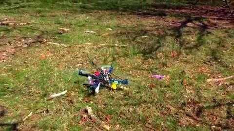 Drone yang berpatroli di hutan dapat memantau perubahan lingkungan dan ekologi