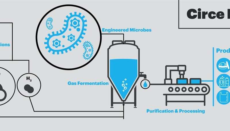 Engineered microbes can produce biodegradable plastics at lower cost and environmental impact than plant-based plastics