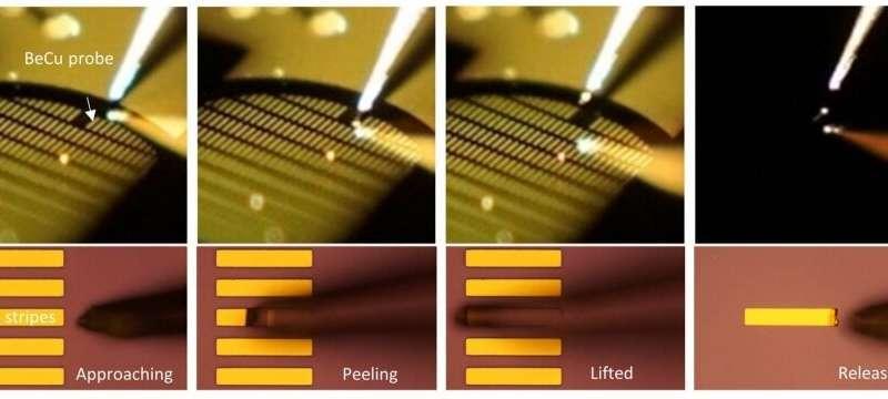 HKU Engineering team develops novel miniaturised organic semiconductor