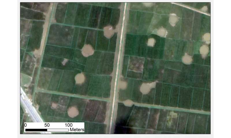 How scientists are using declassified military photographs to analyse historical ecological change