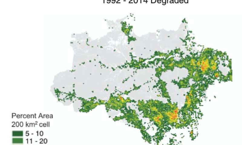 In the Amazon, forest degradation is outpacing full deforestation