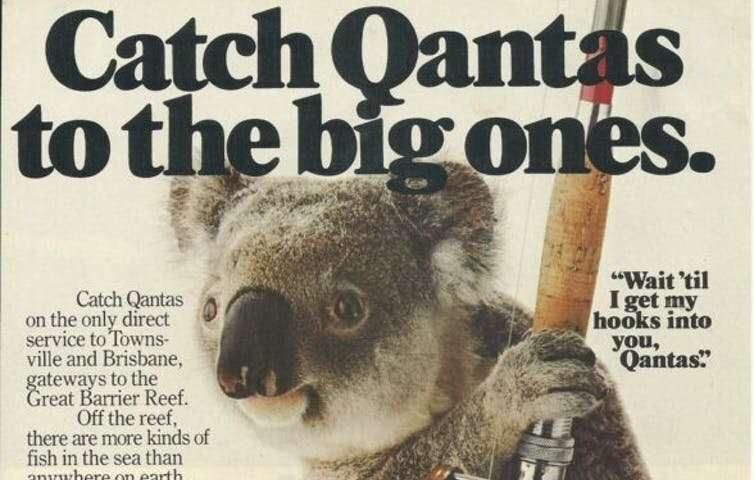 Koalas are the face of Australian tourism. What now after the fires?