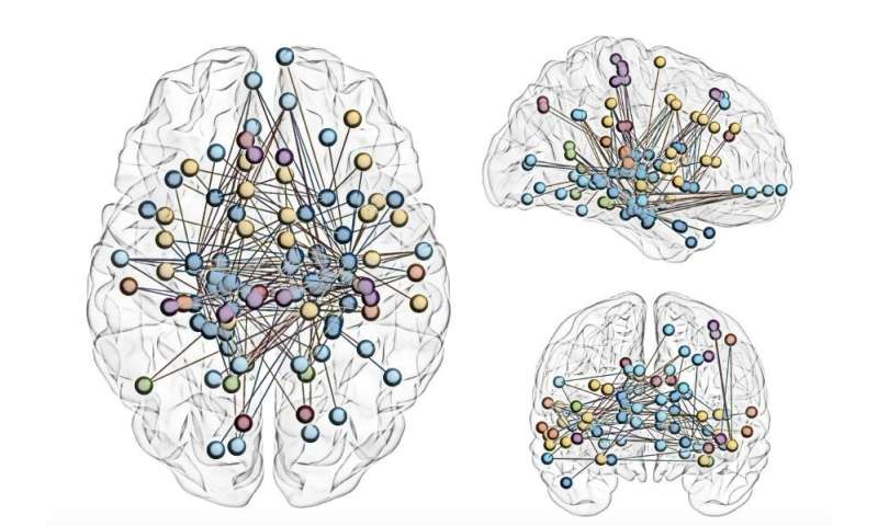 Mapping the subcortex, the most ancient part of the brain