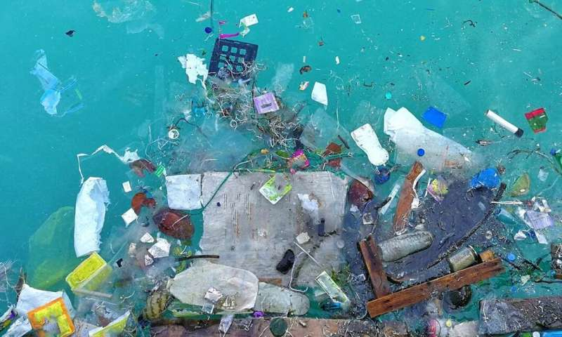 Microplastic pollution is everywhere, but scientists are still learning how it harms wildlife