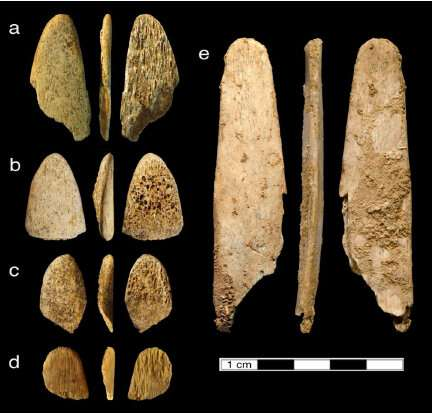 Neandertals were choosy about making bone tools
