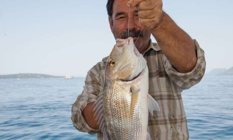 New marine protected areas connect hundreds of kilometres of Turkey's Mediterranean coast