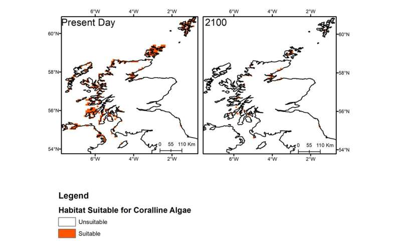 One of Earth's most biodiverse habitats lies off the Scottish coast – but climate change could wipe it out